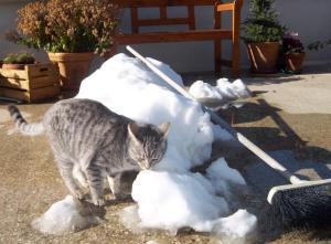 Ende vom Schneemann