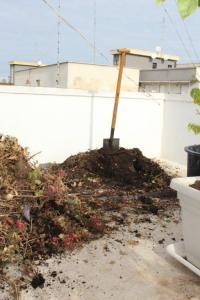 herumwuelen-im-kompost